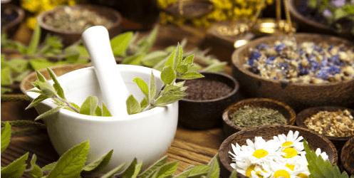 [10 Obat Alami Untuk Menyembuhkan Penyakit Diabetes Dan Cara Meramunya]